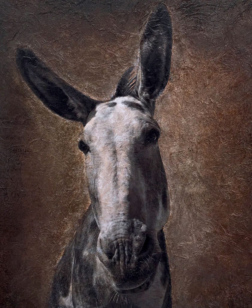 The Donkey -- Mixed Media -- 40x40