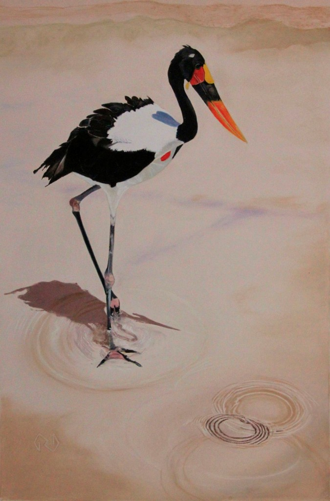 "Saddle-Billed Stork - Pastel - 18"" x 12"""