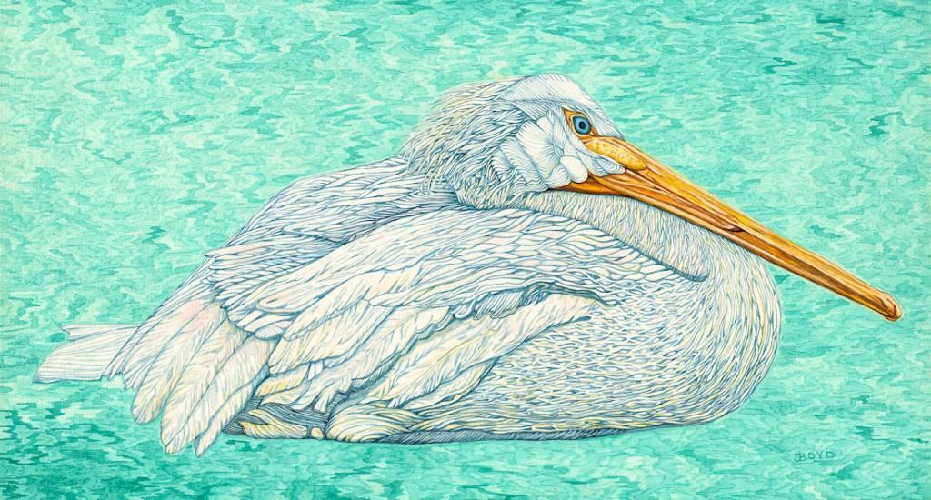 American White Pelican - Watercolor - 12 x 23