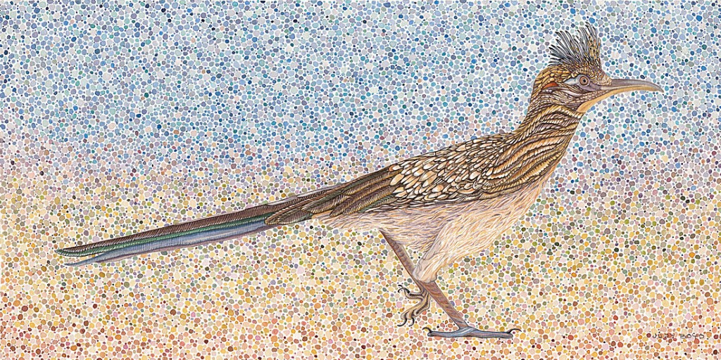 Roadrunner - Watercolor 20 x 10