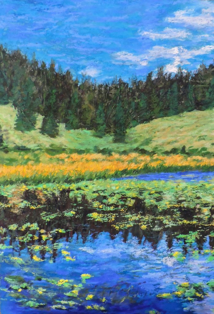 Lilly Pond at 12,000 Feet - Pastel - 14 x 20
