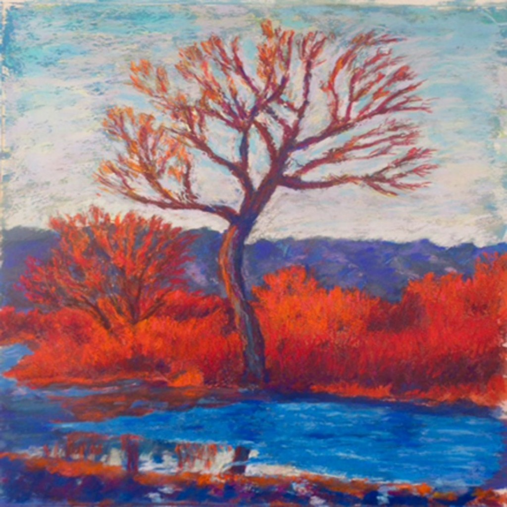 Winter At The Bosque DelApache - Pastel - 20x16