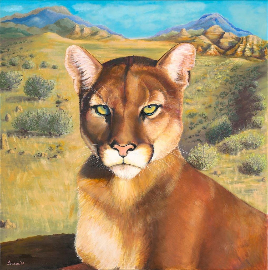Puma - Oil on canvas - 24 x 24