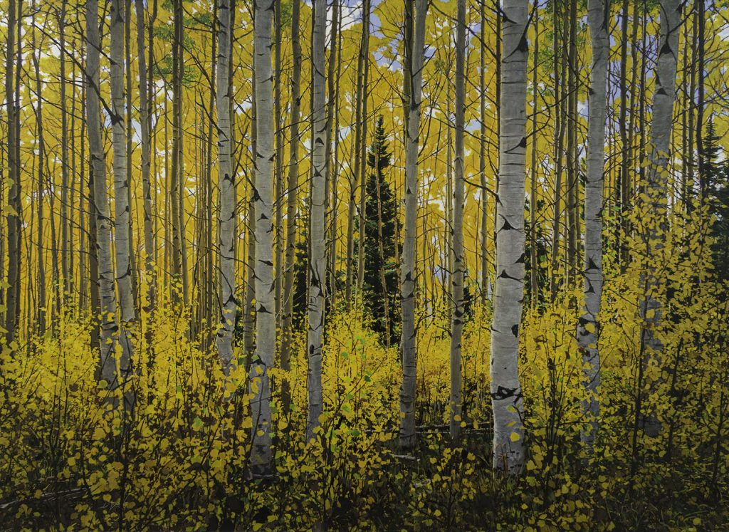 Fall Aspens - Acrylic on Board - 18 x 24