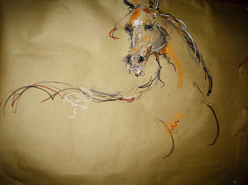 Untitled -- Pastel, charcoal on butcher paper -- 54 x 34