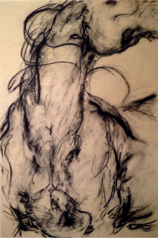 Windstorm I -- Charcoal on paper -- 12 x 18
