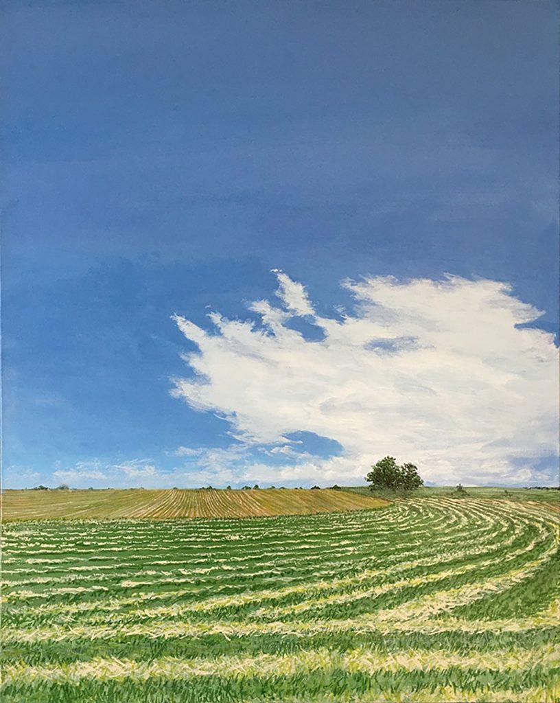 Colorado Field - Acrylic on Canvas - 30 x 24